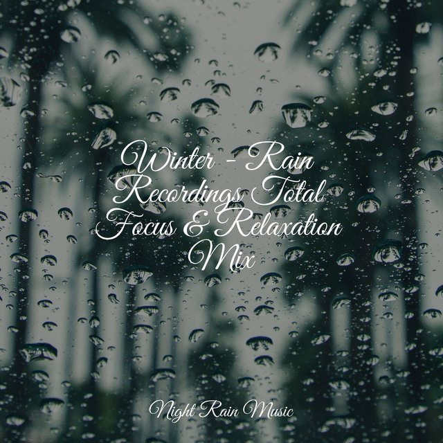 Winter - Rain Recordings Total Focus & Relaxation Mix