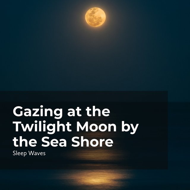 Gazing at the Twilight Moon by the Sea Shore