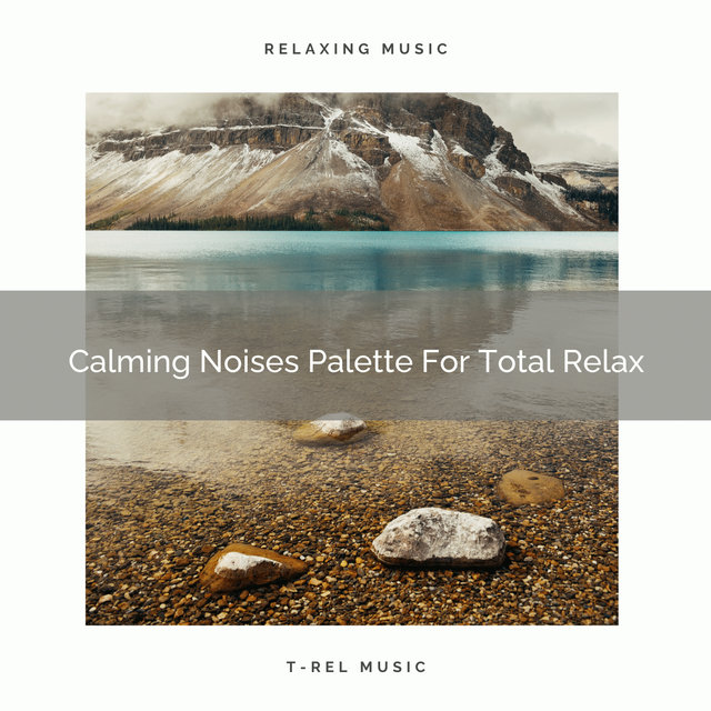Calming Noises Palette For Total Relax