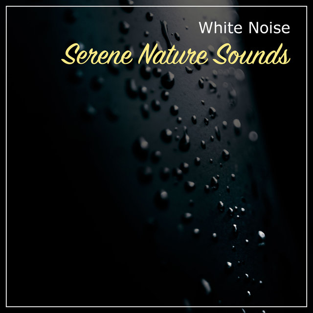 13 Serene White Noise and Nature Sounds