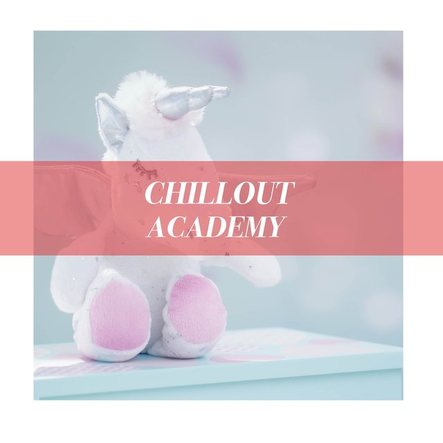 Classic Chillout Academy