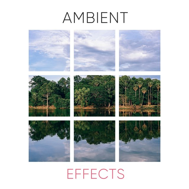 # 1 Album: Ambient Effects