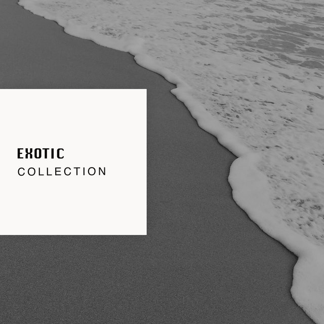 # Exotic Collection