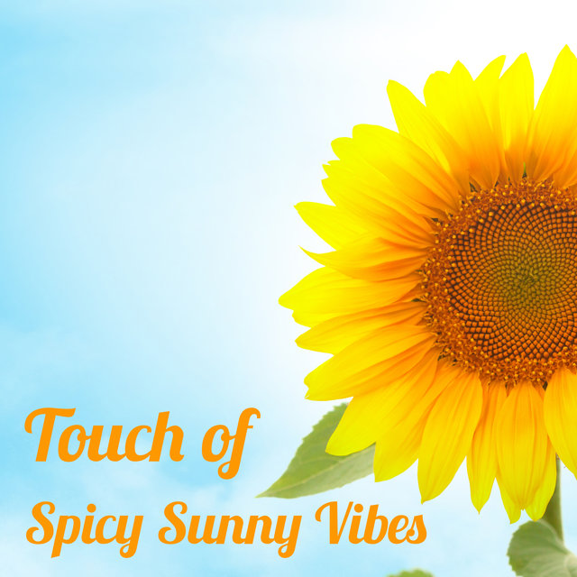 Touch of Spicy Sunny Vibes - Chillout Sunrise Beach Party Mix 2021