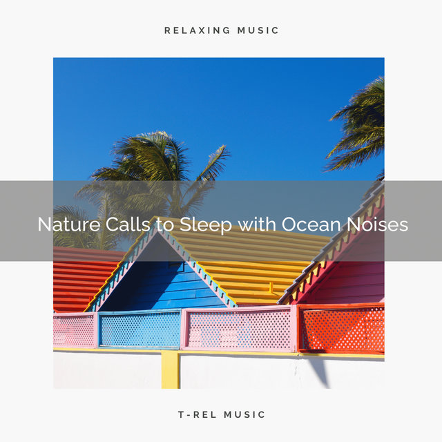 Nature Calls to Sleep with Ocean Noises