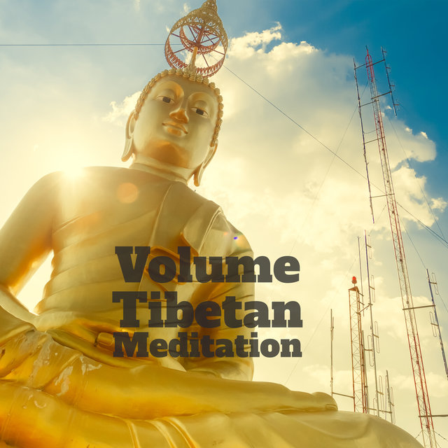 Volume Tibetan Meditation - Ambient Sounds of Tibetan Bowls and Gongs That Sound Great as a Background for Deep Contemplation