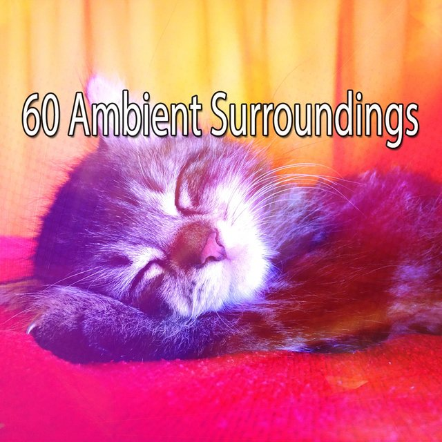 60 Ambient Surroundings