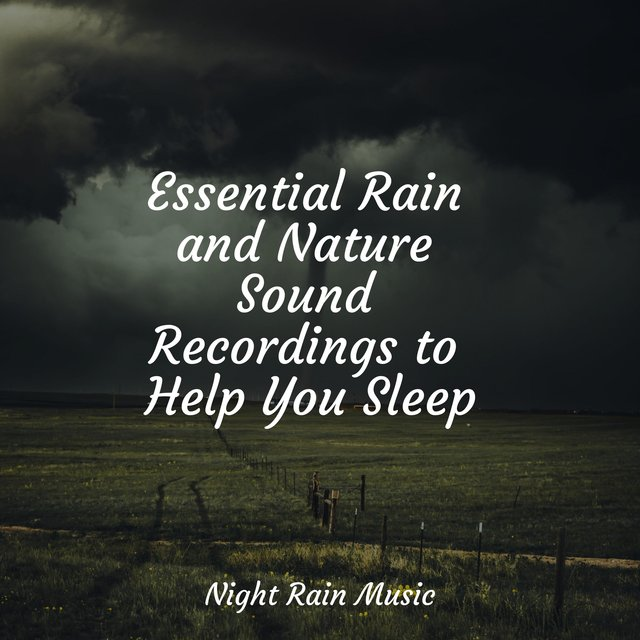 Essential Rain and Nature Sound Recordings to Help You Sleep