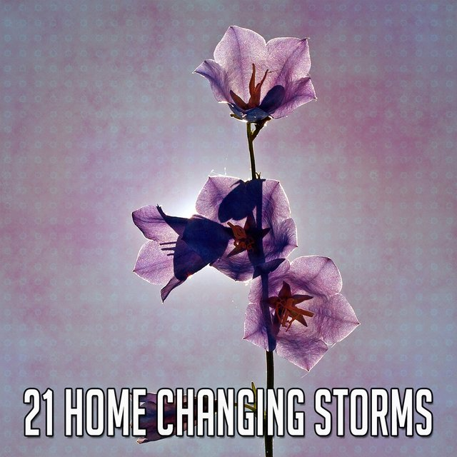 21 Home Changing Storms