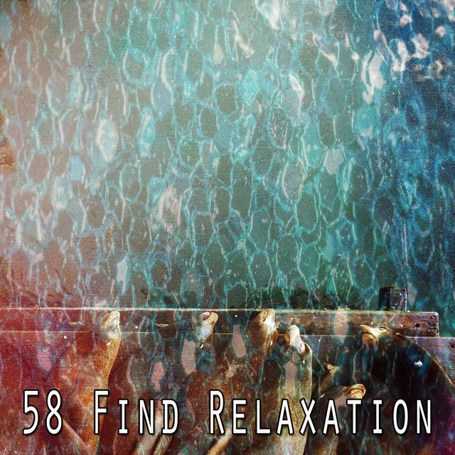 58 Find Relaxation