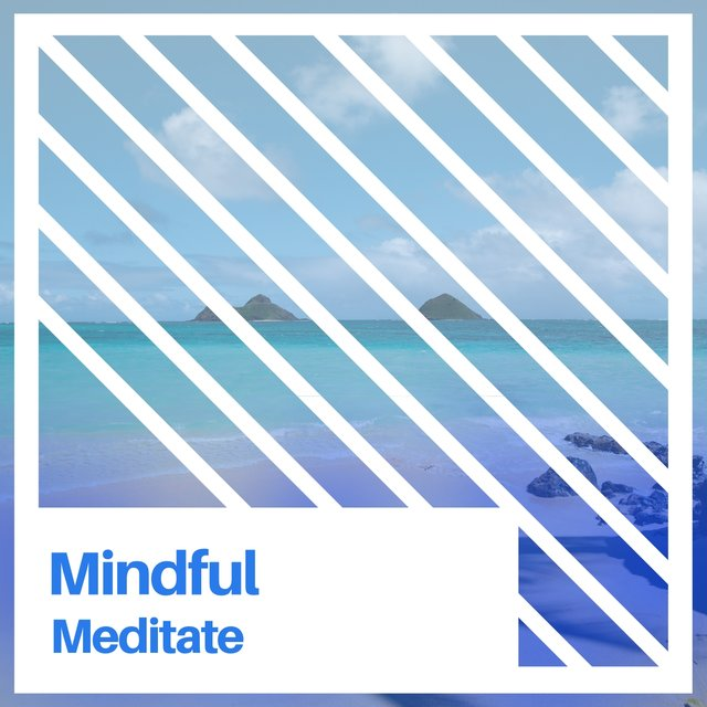 # 1 A 2019 Album: Mindful Meditate