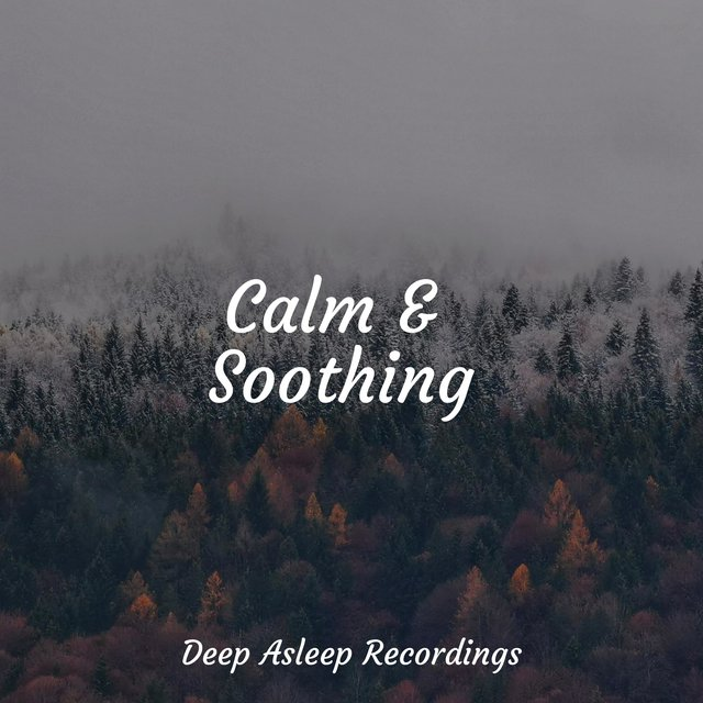 Calm & Soothing