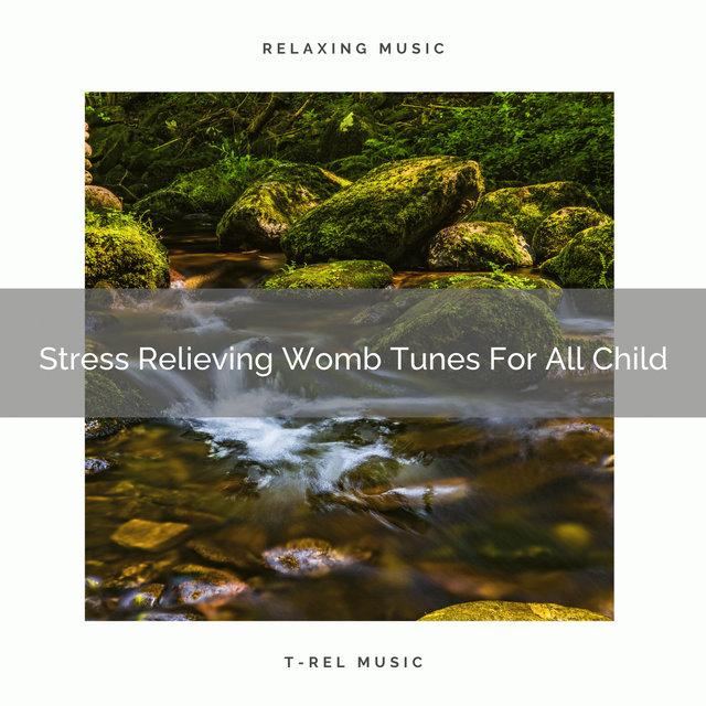 Stress Relieving Womb Tunes For All Child