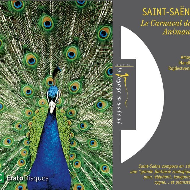 Saint-Saëns : Le Carnaval des animaux, Introduction et Rondo Capriccioso