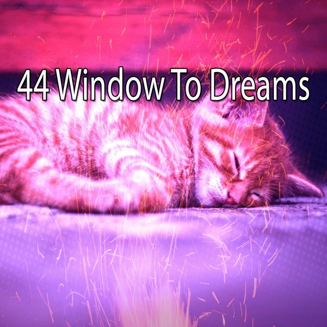 44 Window to Dreams