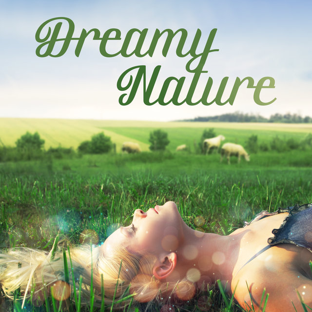 Dreamy Nature: Soft New Age Music to Sleep, Soothing Sounds of Nature, Stress Relieving Melodies, Relax and Chill Out