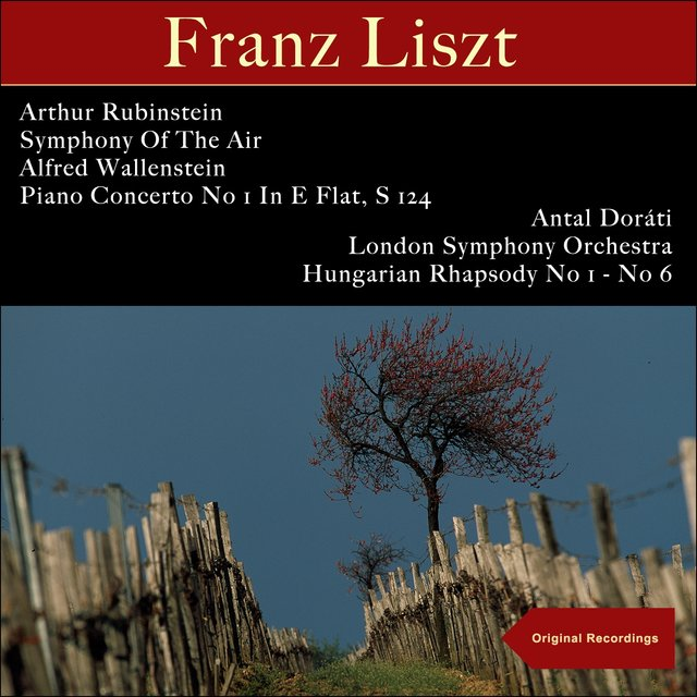 Liszt: Piano Concerto No 1 in E Flat, S 124 - Hungarian Rhapsody No 1 - No 6