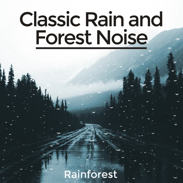 Classic Rain and Forest Noise