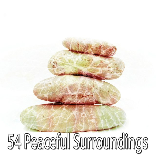 54 Peaceful Surroundings