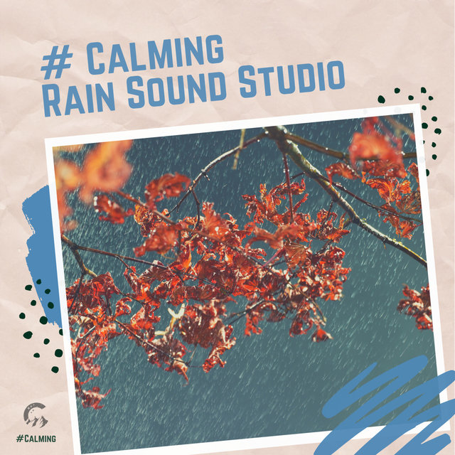 # Calming Rain Sound Studio
