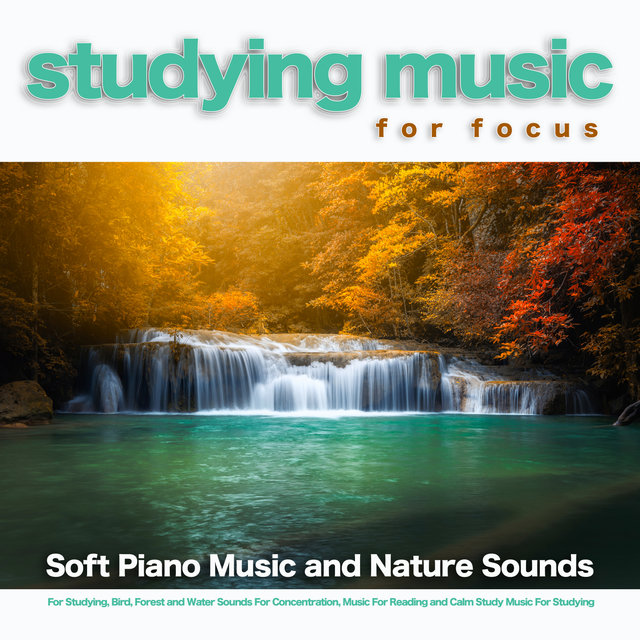 Studying Music For Focus: Soft Piano Music and Nature Sounds For Studying, Bird, Forest and Water Sounds For Concentration, Music For Reading and Calm Study Music For Studying