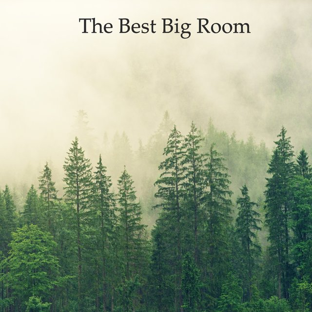 The Best Big Room Pt.014