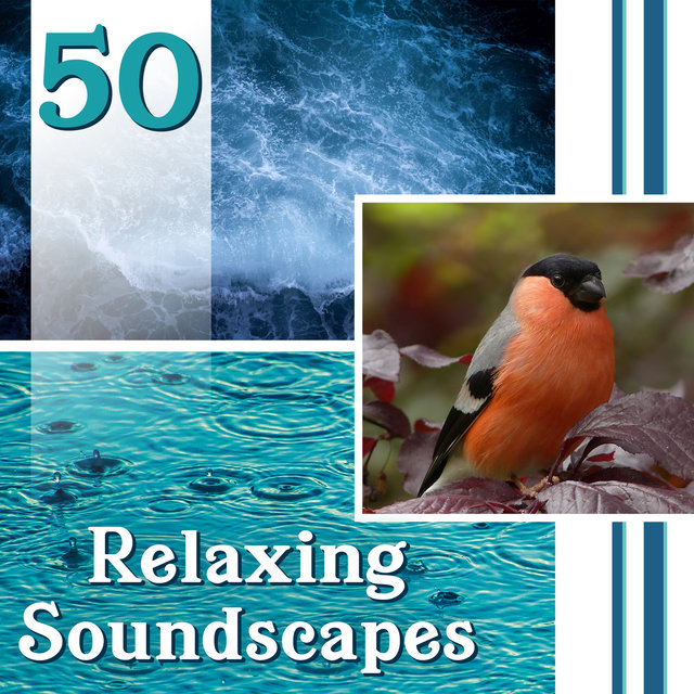 50 Relaxing Soundscapes: Natural Ambiences for Yoga, Deep Meditation & Healing, Music for Stress Relief