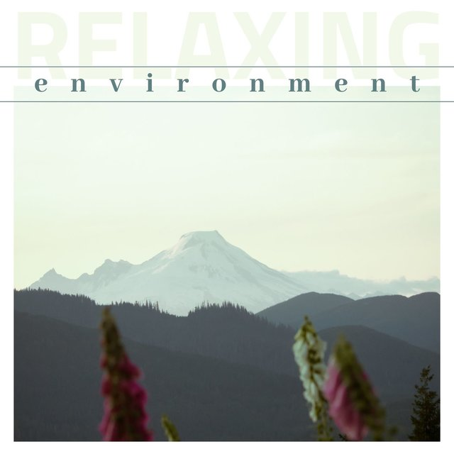 Relaxing Environment: Soothing Atmosphere, Nature Sounds, Meditation & Yoga Music