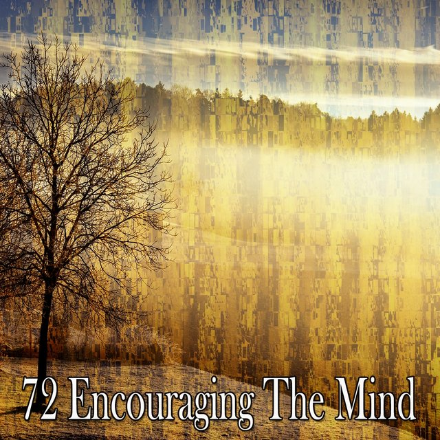 72 Encouraging the Mind