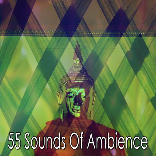 55 Sounds of Ambience