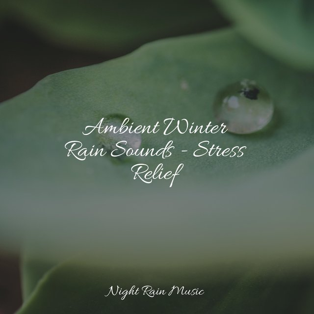 Ambient Winter Rain Sounds - Stress Relief