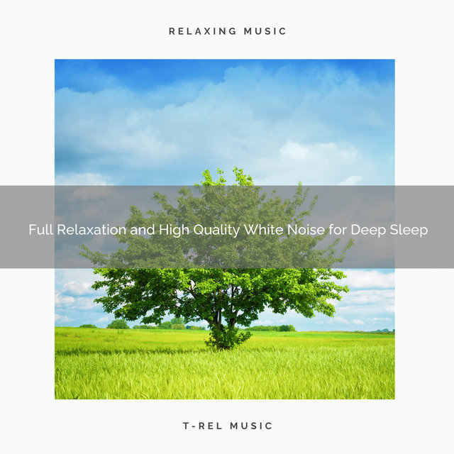 0001 Full Relaxation and High Quality White Noise for Deep Sleep