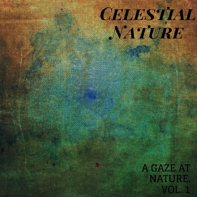 Celestial Nature - A Gaze at Nature, Vol. 1