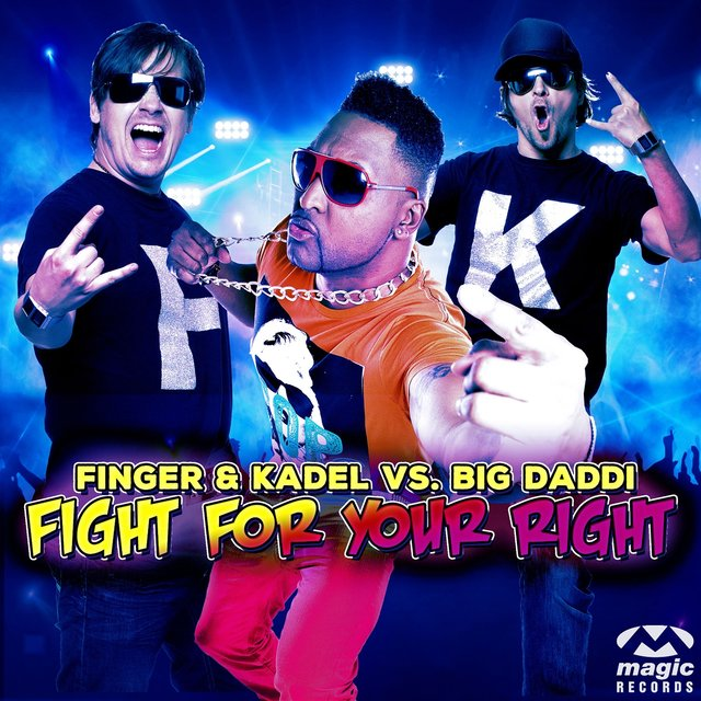 Fight for Your Right (Remixes)