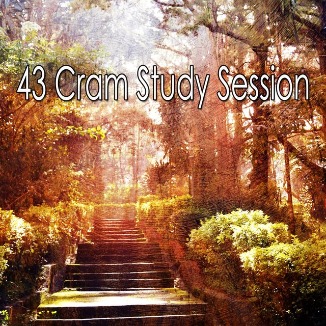 43 Cram Study Session
