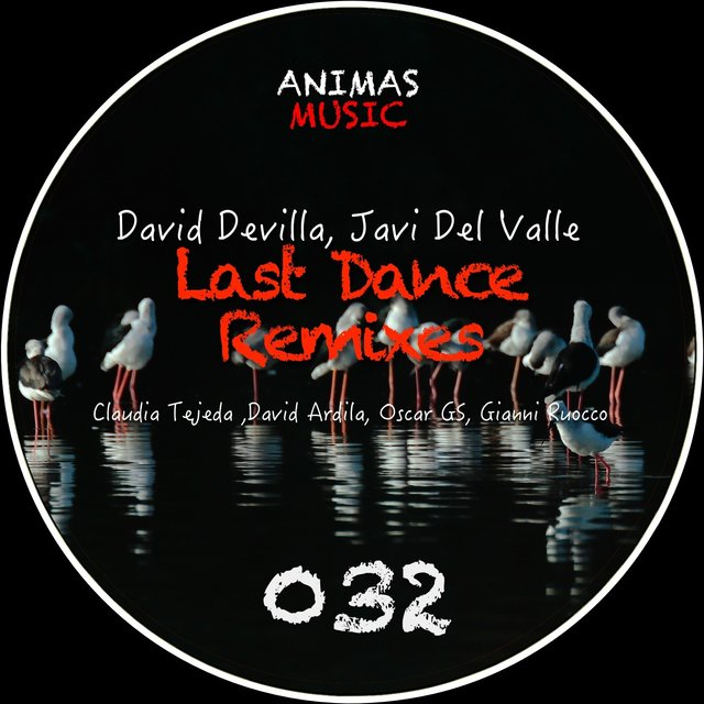 Last Dance Remixes