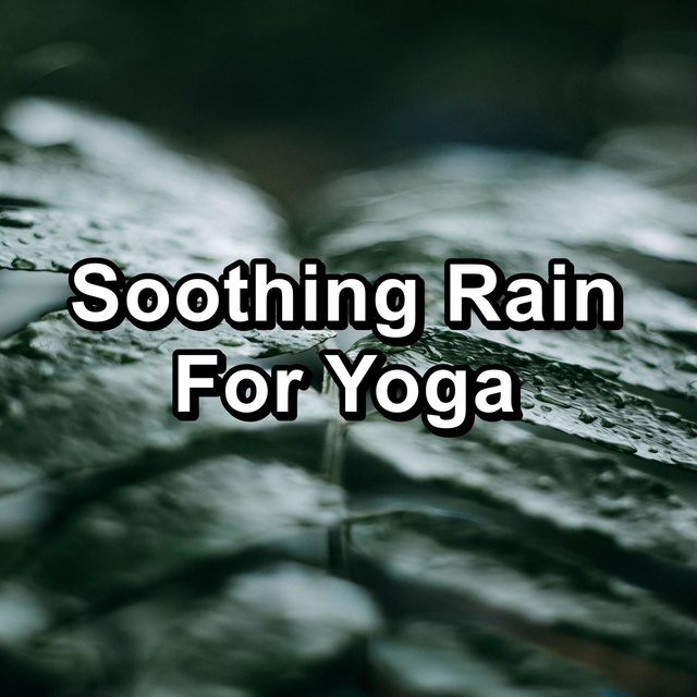 Soothing Rain For Yoga