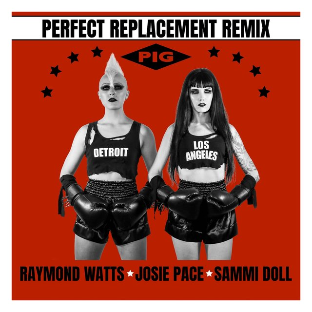 Perfect Replacement (Pig Remix) [feat. Sammi Doll]