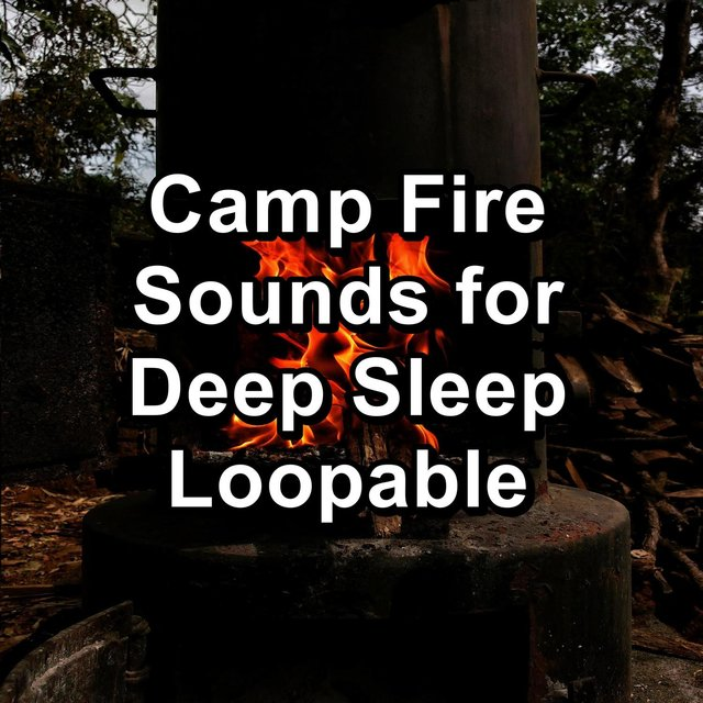 Camp Fire Sounds for Deep Sleep Loopable