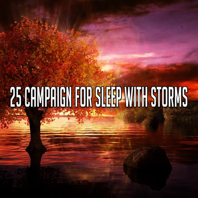 25 Campaign for Sleep with Storms
