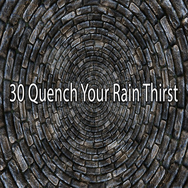 30 Quench Your Rain Thirst