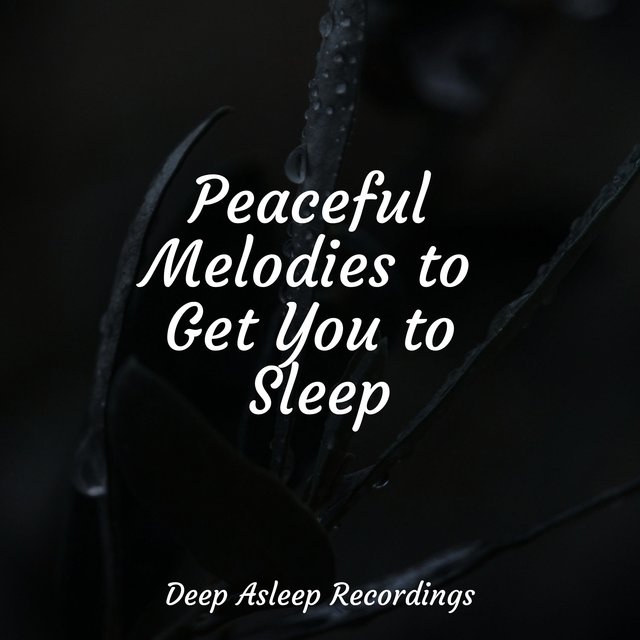 Peaceful Melodies to Get You to Sleep