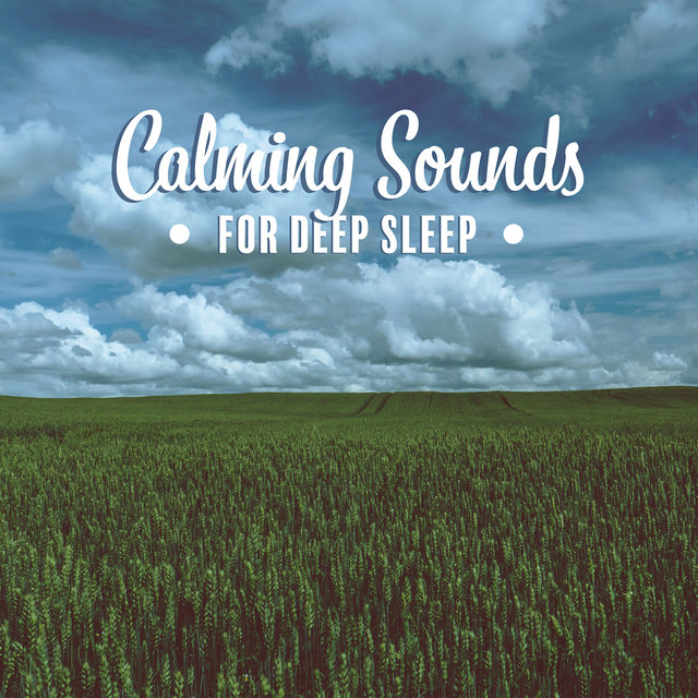 Calming Sounds for Deep Sleep: Music to Help You Sleep, Music to Cure Insomnia, Relaxing Music Therapy, Inner Harmony, Soul, Body & Mind Healing