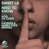 Need to Know (Kadenza Remix)