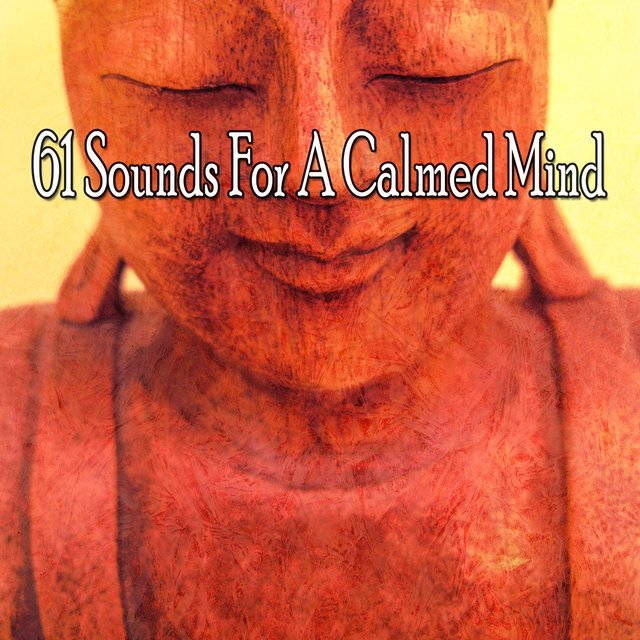 61 Sounds for a Calmed Mind