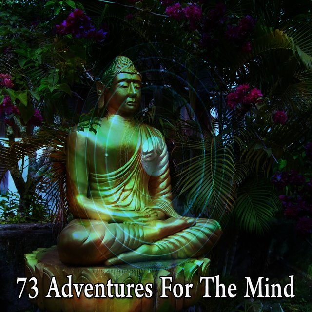 73 Adventures for the Mind