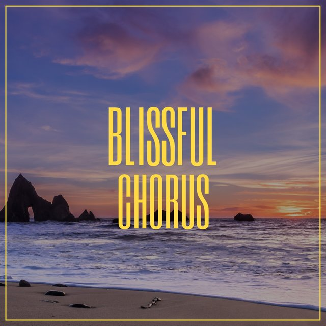 # 1 Album: Blissful Chorus