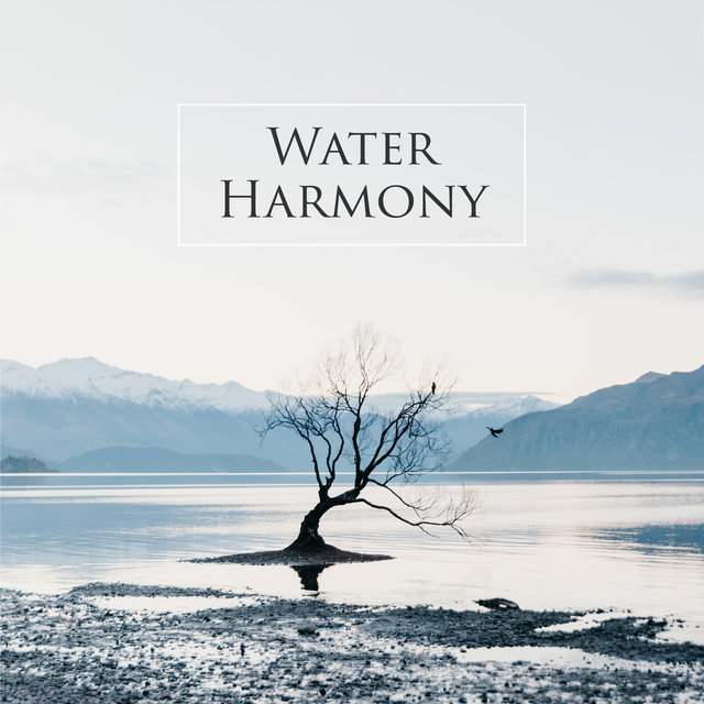 Water Harmony: Rain, Ocean Waves, River for Sleep, Meditation and Relaxation