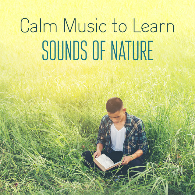 Calm Music to Learn with the Sounds of Nature. Study with Instrumental Music