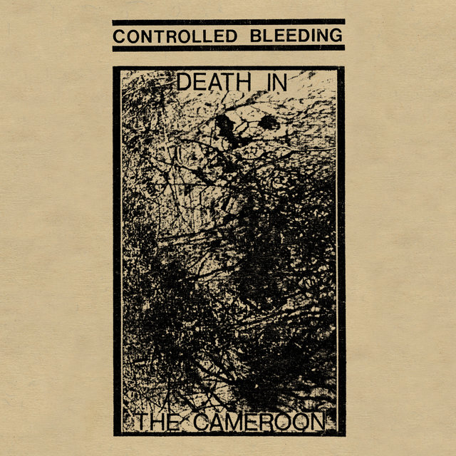 Death in the Cameroon
